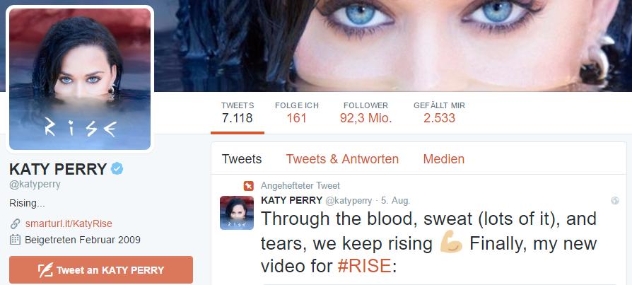 Katy Perry hat derzeit die meisten Follower auf Twitter.