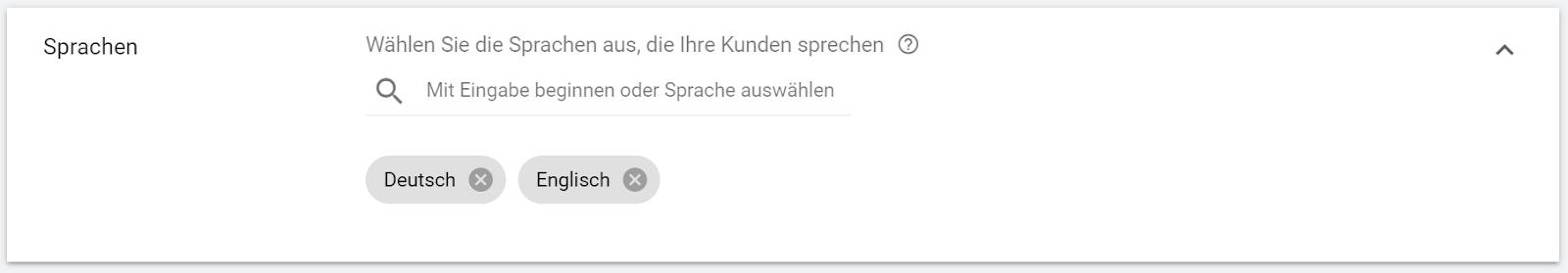 Google Ads Kampagnen erstellen - Spracheinstellungen